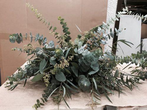 Eucalyptus (L00)