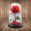 The Enchanted Rose (R100)