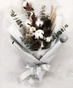 Winter Cones (CT01)
