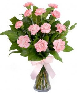 Pink Carnations with Vase (C01)