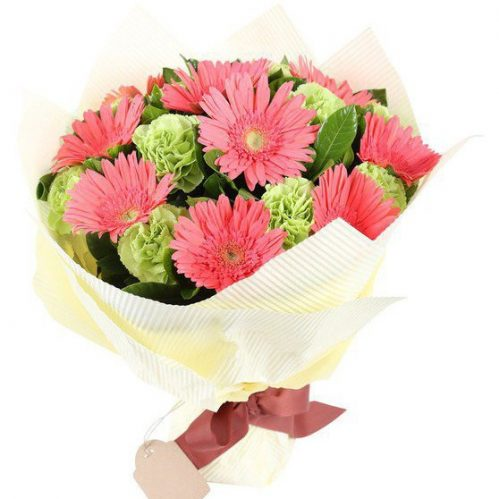 Mixed Gerberas and Carnations Bouquet (C02)