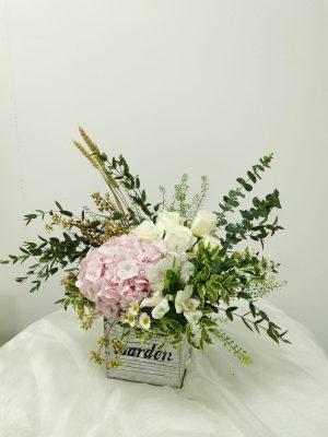 Premium Freestyle in Vase (R110)